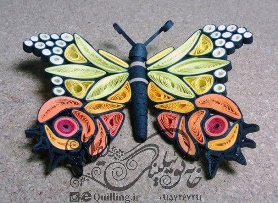 انواع پروانه ملیله کاغذی